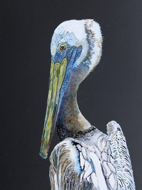 Pelican-Print