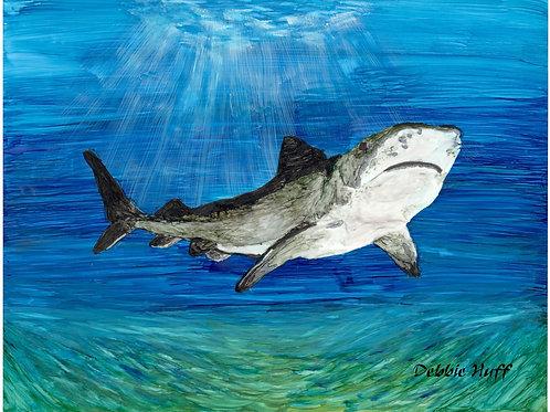 Shark-Print