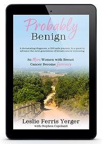 eBook-ProbablyBenign-new.png