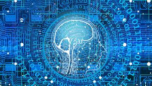 Training a Neural Network vs. Developing through Genetic Programming