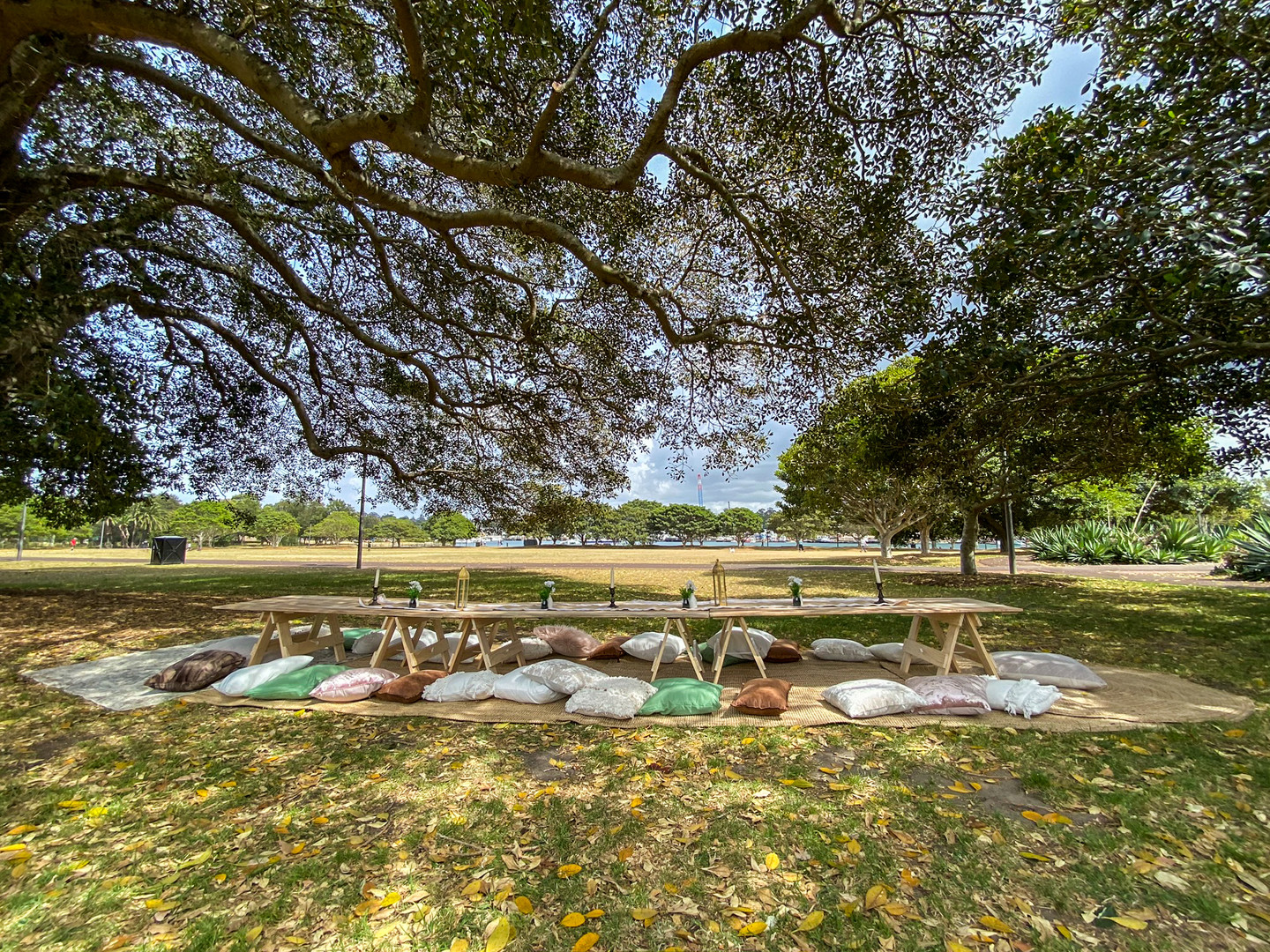 Picnic in the Park for 25