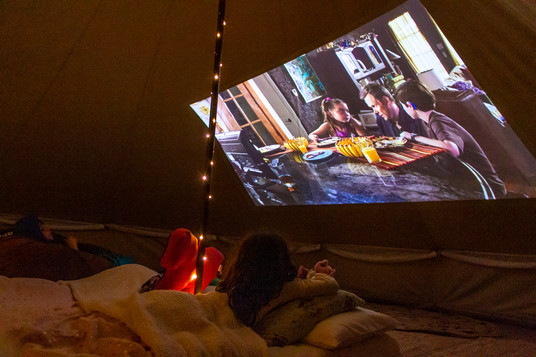 At the Movies in Your Backyard