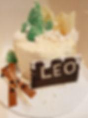 Gluten Free ski theme cake