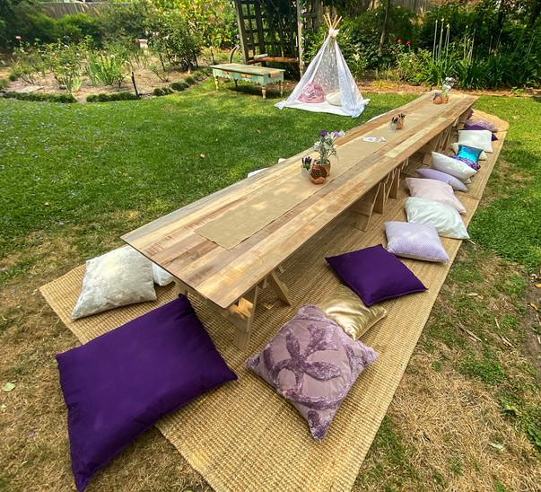 Purple Picnic for 25
