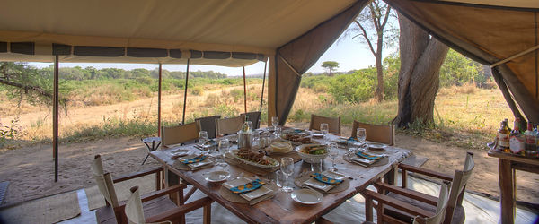 Luxury Safari Camp