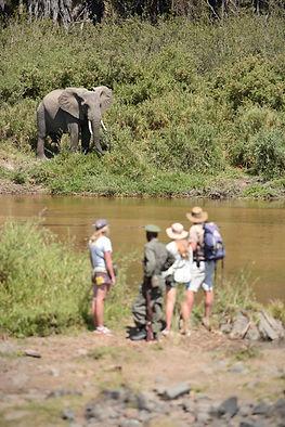 Walking Safari, Kichaka Expeditions