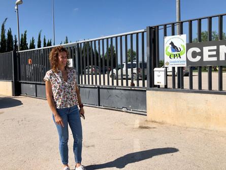 EL CENTRO DE PROTECCIÓN ANIMAL SIGUE SIN CONTRATO Y EL AYUNTAMIENTO DEBE 26.000 EUROS A LA EMPRESA