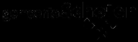 Logo Schoten (transp zwart).png