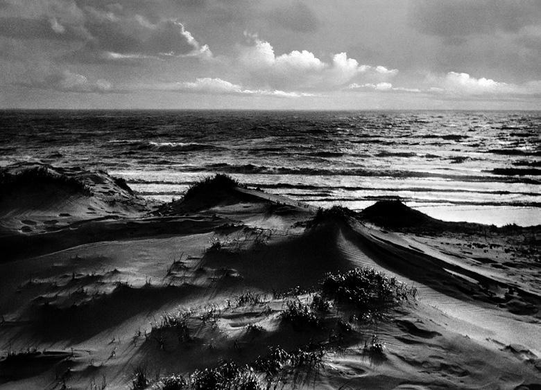 Saipan (Düne #12), 2013
