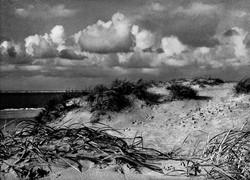 Saipan (Düne #05), 2013