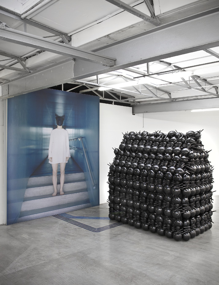 Black Project No.2 (Harrisburg) 2013