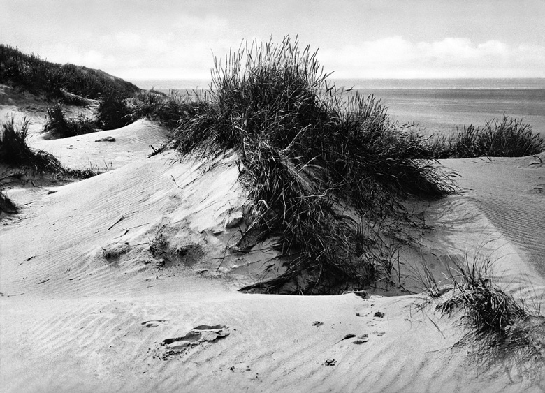 Cuxhaven (Düne #08), 2013