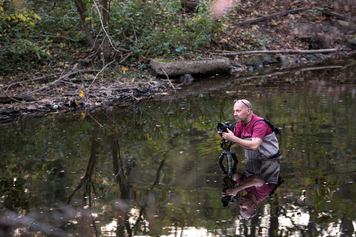 Fall Foilage Shoot for Wissahickon Valley Watershed Association