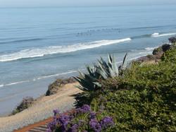 Southern CA shore