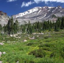 Mount Shasta visto da seção superior do Panther Meadows