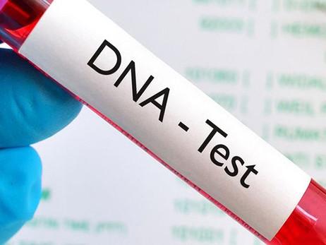 examen de ADN
