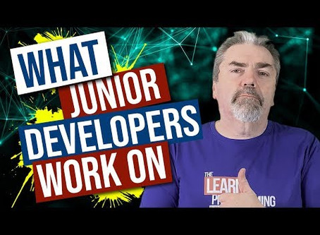 What Would A Junior Developer Work On?