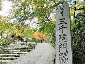 京都三千院 心繋.jpg