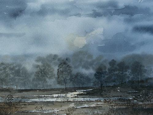 Rain soaked field, misty morning.