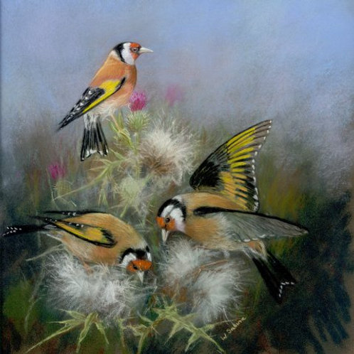 Goldfinches II