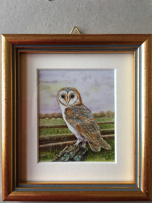 barn Owl Miniature