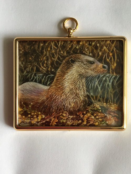 Otter among seaweed