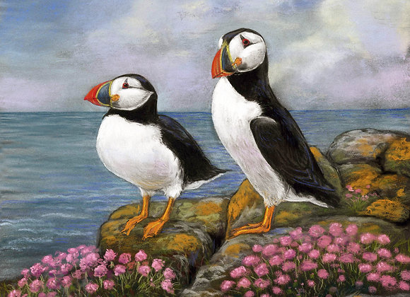 Puffins and Sea Thrift II