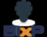 BIxP, Business Intelligence and Predictions, Analystics, BigData