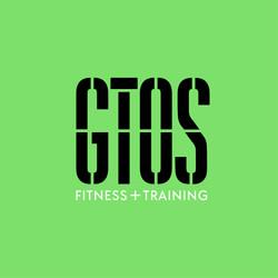 GTOS Social Media 3