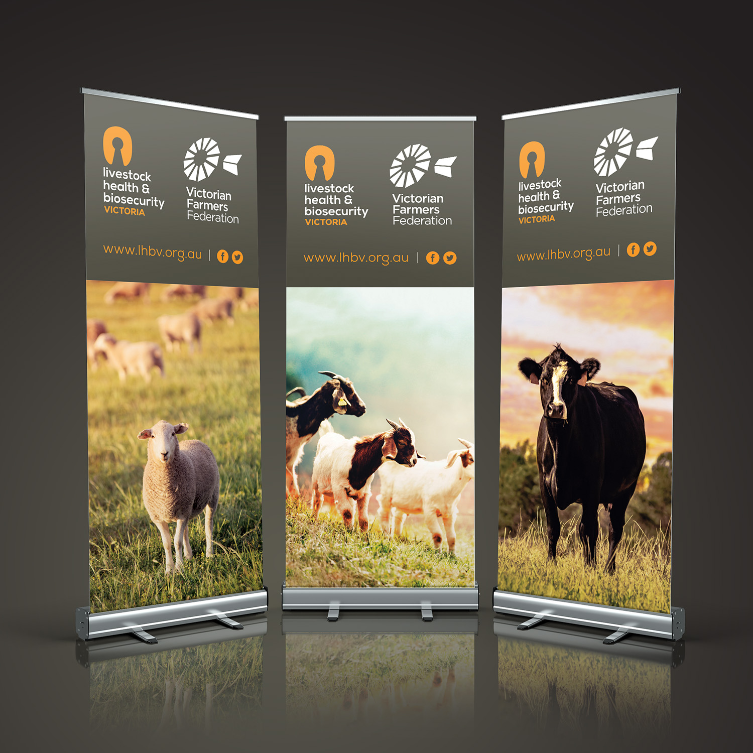 VFF banners