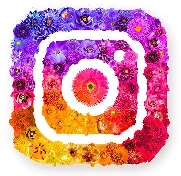 Flower Power_edited.jpg