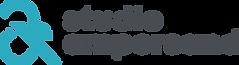 SA logo 2020.png