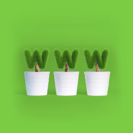 website growth.jpg