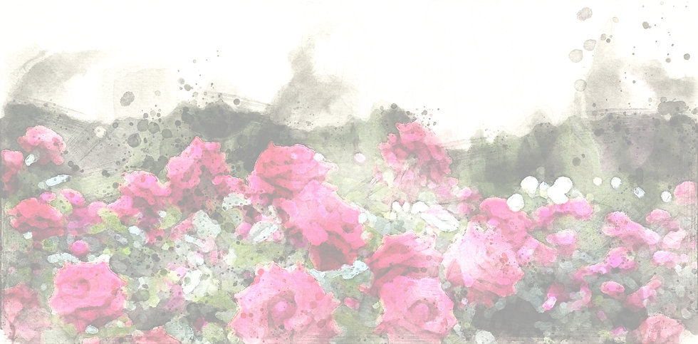 Rose Garden watercolor2.jpg