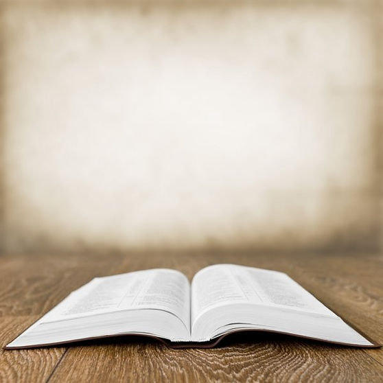 bible pic 1.jpg