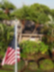 Drone%20(1)_Moment2_edited.jpg