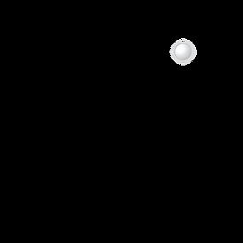 Faheem Mujahid NEW Logo FINAL BLACK.png