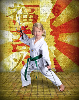 Tae Kwon Do Karate Overland Park Lenexa Prairie Village