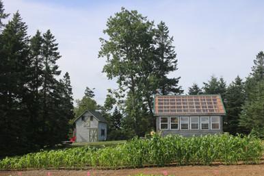 Green House & Garden