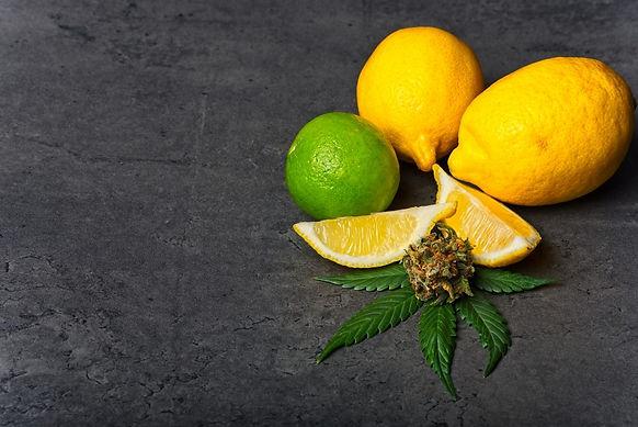 Frosted-Lime-CBD-Hemp-Flower-Strain-Revi