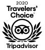 TA Choice Award.png