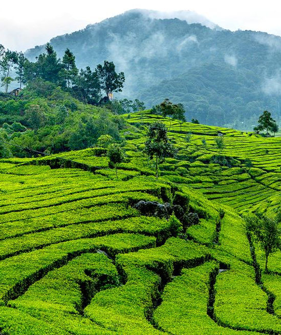 15-experiences-you-must-have-in-Bandung-