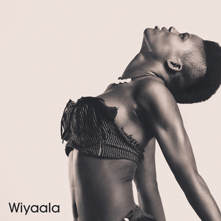 Wiyaala - Ghana  Wiyaala 'The Young Lioness of Africa' is an AfroPop singer from Funsi, Upper West Ghana. Her powerful voice and bold image fuses the giant pop sounds of David Foster with the modern funk and flair of Janelle Monae.