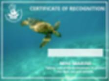mini marine cert.PNG