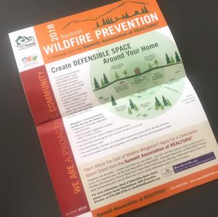 SAR Widfire Prevention