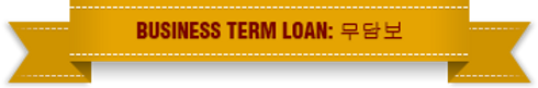 business term loan.png