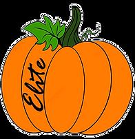 Elite OCT logo_edited.png