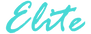 Elite logo teal.png