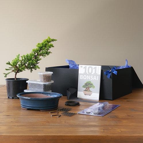 Premium Gift Box Bonsai Starter Kit