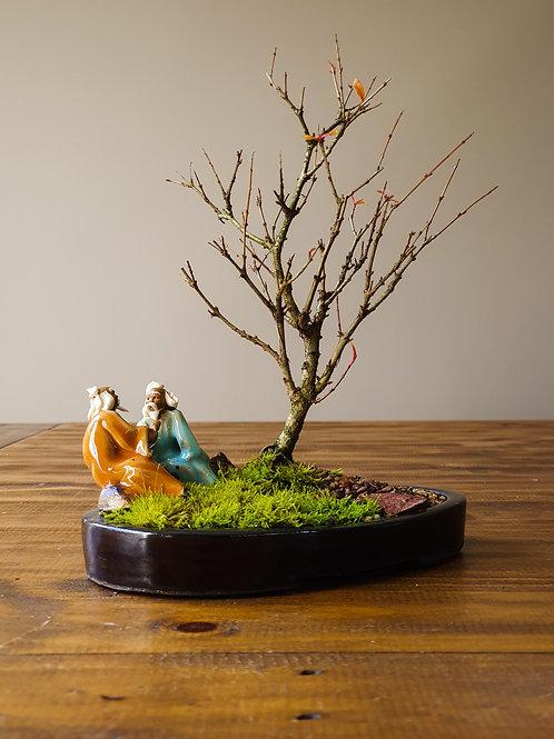Dwarf Pomegranate with figurine and landscape